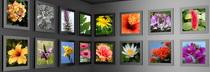 photographers-canvas